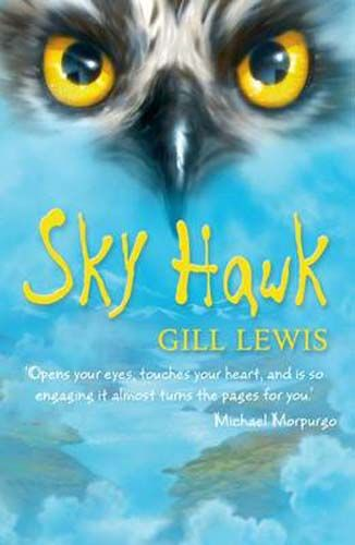 Sky Hawk - Pack of 6 Badger Learning