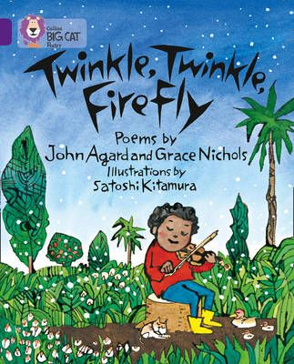 Twinkle, Twinkle, Firefly: Band 08/Purple (Collins Big Cat) Badger Learning