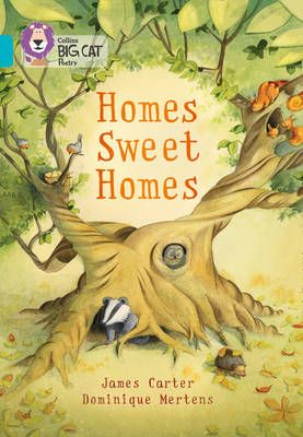 Homes Sweet Homes: Band 07/Turquoise Badger Learning