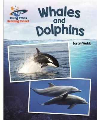 Whales and Dolphins Badger Learning