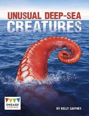 Unusual Deep-Sea Creatures Badger Learning