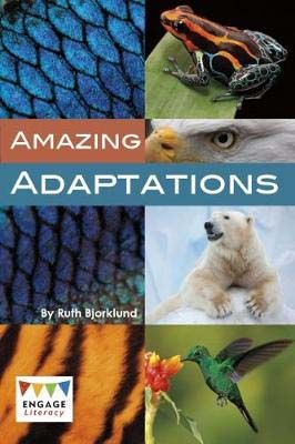 Animal Adaptations Badger Learning
