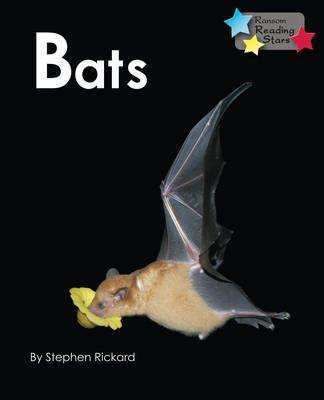 Bats Badger Learning