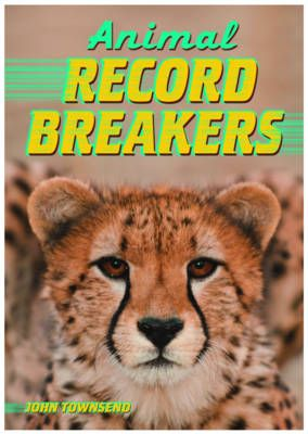 Animal Record Breakers Badger Learning