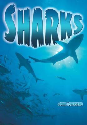 Sharks Badger Learning