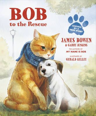 Bob to the Rescue: An Illustrated Picture Book Badger Learning