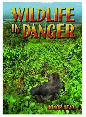 Wildlife in Danger Badger Learning