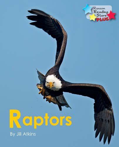 Raptors Badger Learning