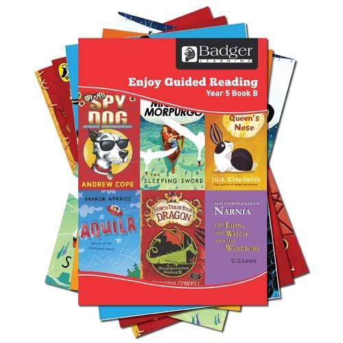 Enjoy Guided Reading Year 5 Pack B