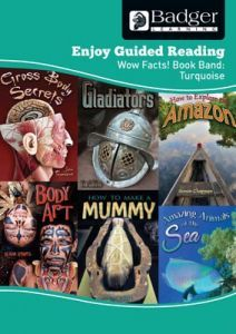 Enjoy Guided Reading Non-fiction for KS2 (at Turquoise level) Teacher Book + CD