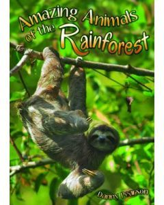 Amazing Animals of the Rainforest