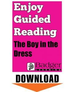 Enjoy Guided Reading: The Boy in the Dress Teacher Notes