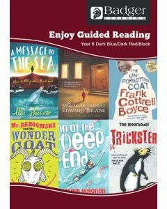 Enjoy Guided Reading KS2 Book Bands: Year 6 Dark Blue, Dark Red & Black Teacher Book & CD