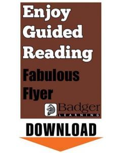 Enjoy Guided Reading: Fabulous Flyer Teacher Notes